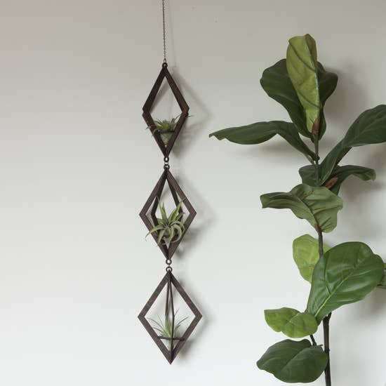 Diamond Walnut Hanger Trio - With Plants