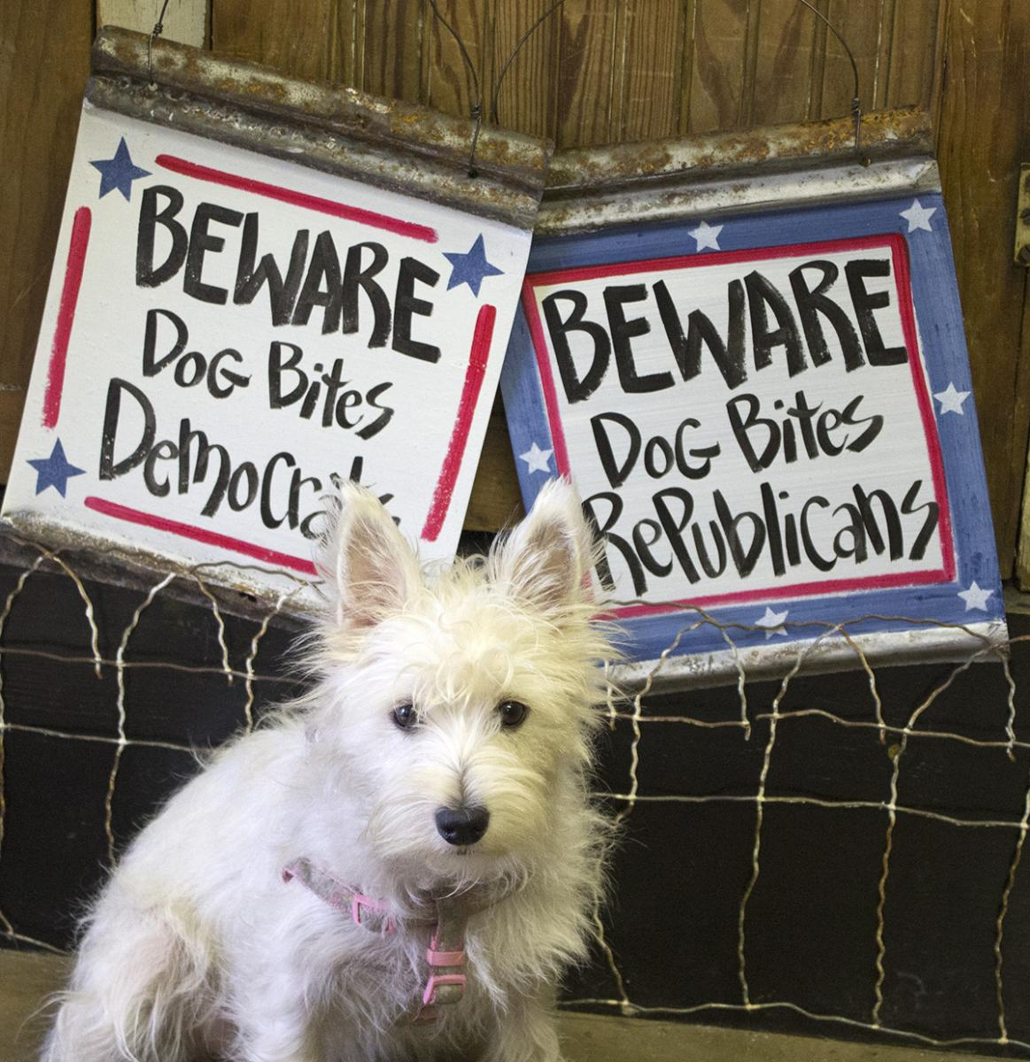 Beware - Dog bites Repulicans!