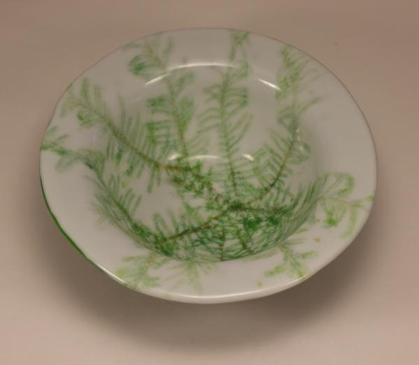 Fern Vitra Deep Bowl picture