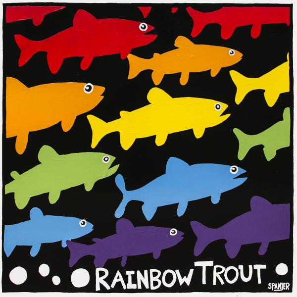 Rainbow Trout 3