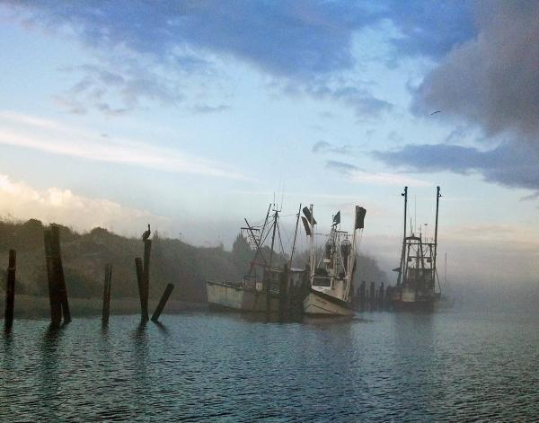 Shrimp Boats In The Mist