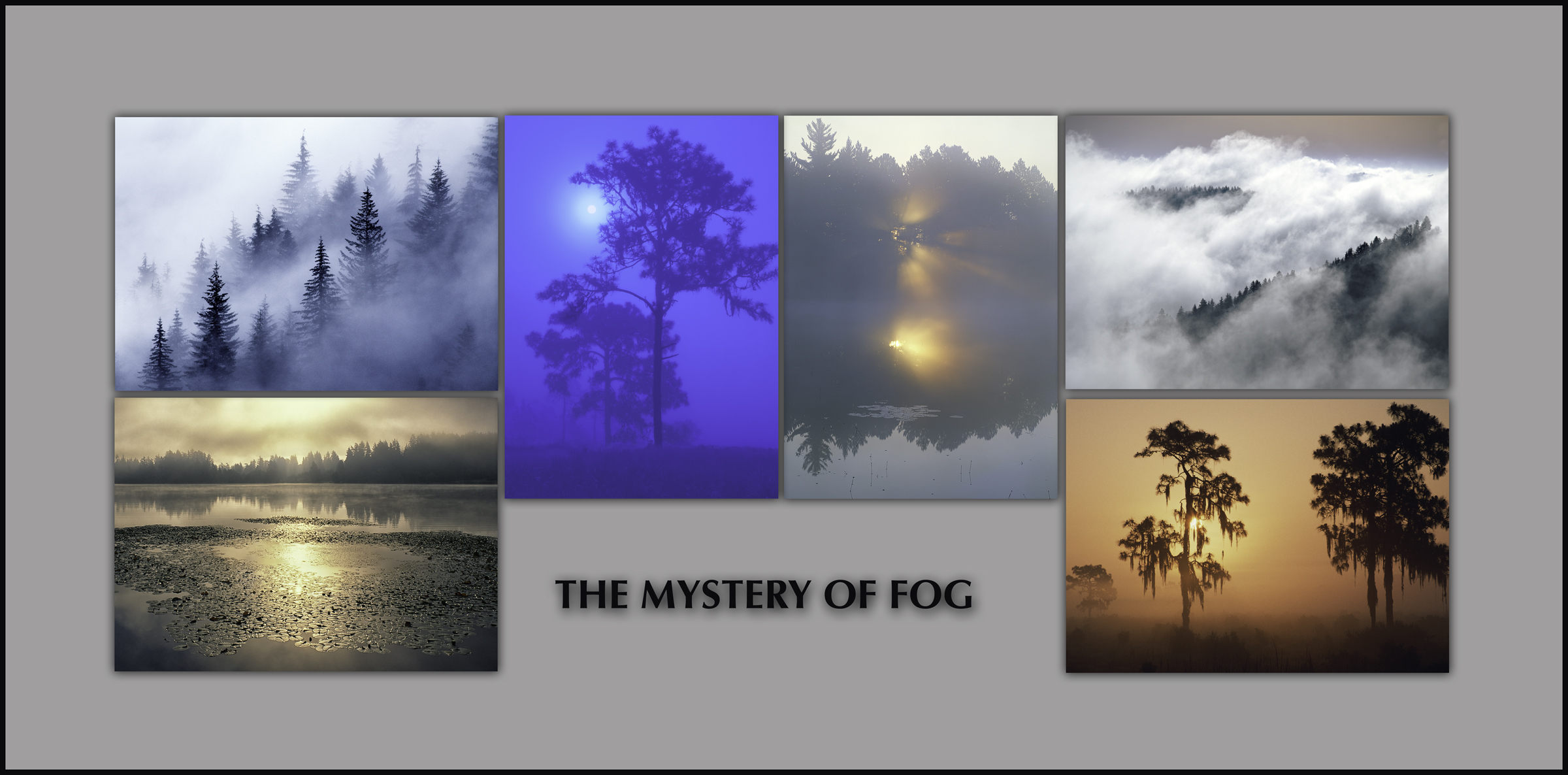 "NOTECARDS: ""Mystery of Fog"" - boxed set of 6 different cards, each 5""x7"""