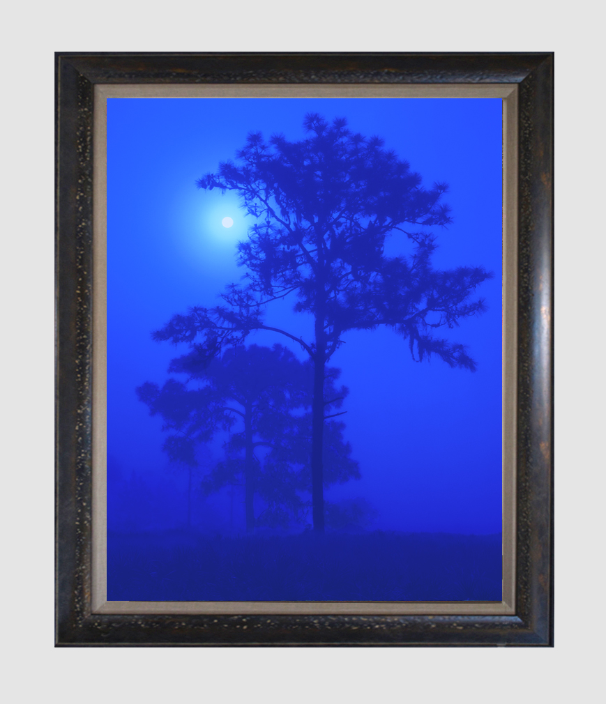 """Blue Moon"", 18""x24"" framed photograph"
