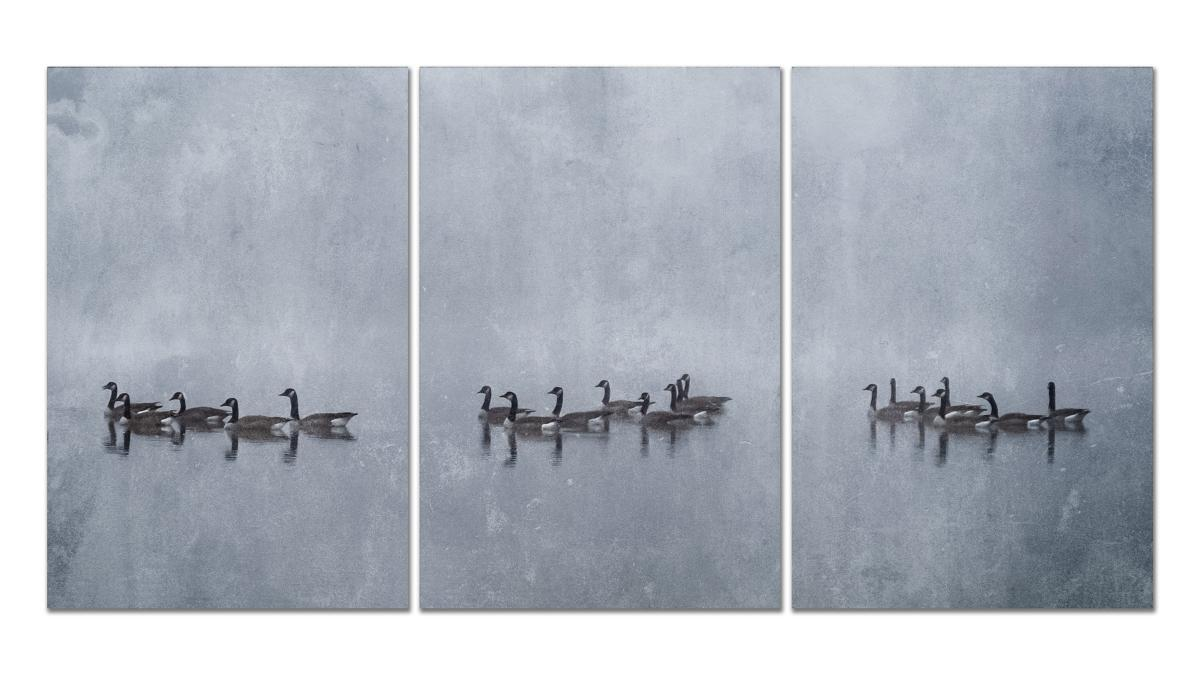 Geese in the Fog, Triptych