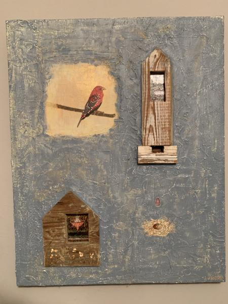 Bird Watching Houses