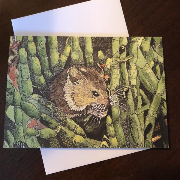 Marsh Mouse Greeting Card
