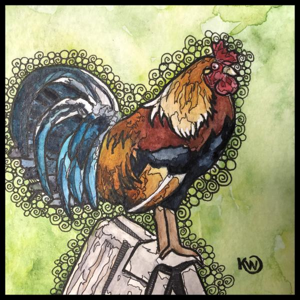 Watermini: Rooster