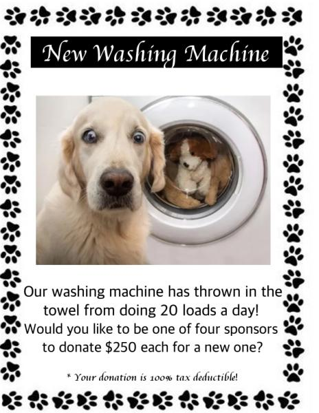New Washer Machine