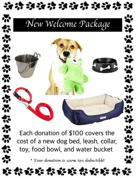 Welcome Package for New Rescue Dog Joining PAWS4you picture