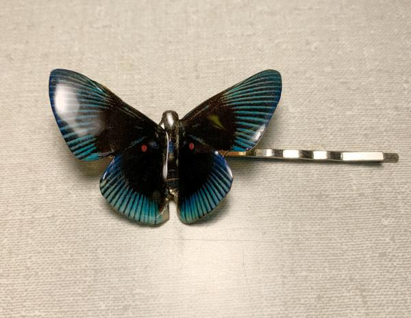 Black and blue butterfly bobby pin