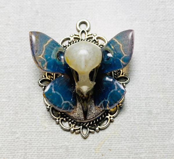 Blue butterfly with bird skull pendant