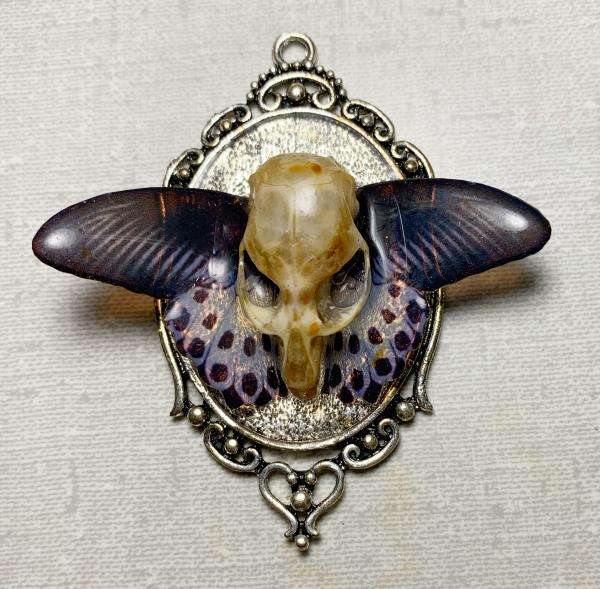 Black and white butterfly with vole skull pendant