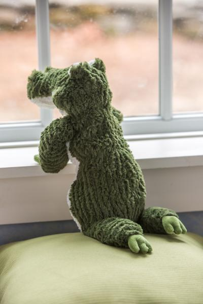 "Alligator (Cozy Toes) (17"") picture"
