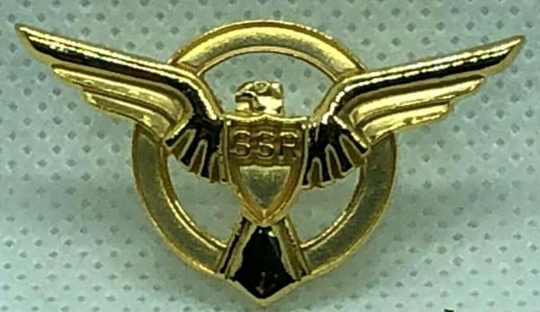 SSR WINGS - CAPTAIN AMERICA - AGENT CARTER - Metal Movie Lapel Pin Set of 2