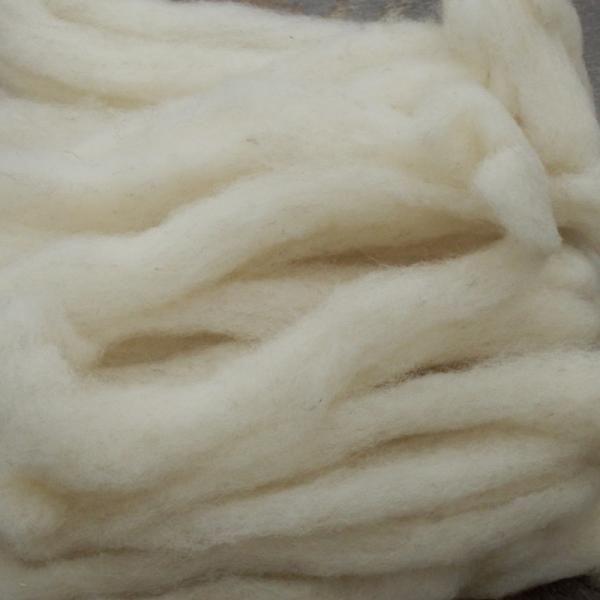 Jacob roving, undyed white SW619