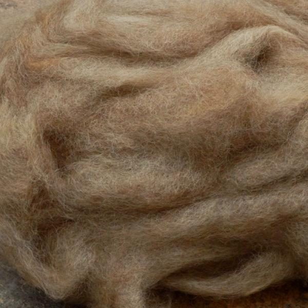 Cotswold roving, undyed natural color, SW520