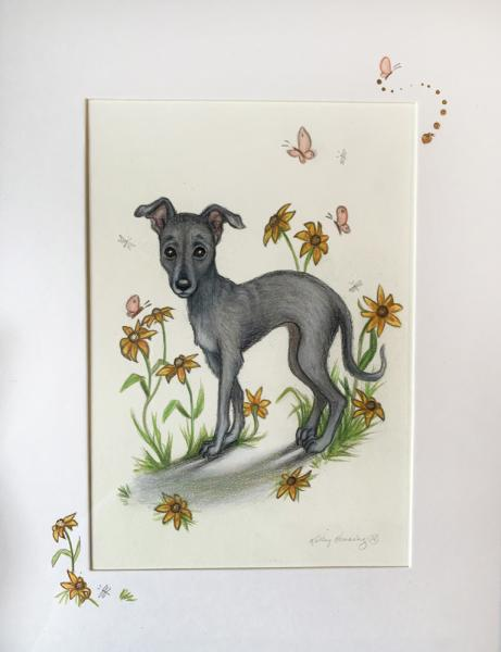 """Daisy Dog"", Small Original 5 x 7 Color Pencil Art, Cute Dog Series"