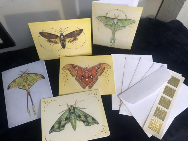 Notecards, Nature Moths with gold accents  4.5 x 5.5
