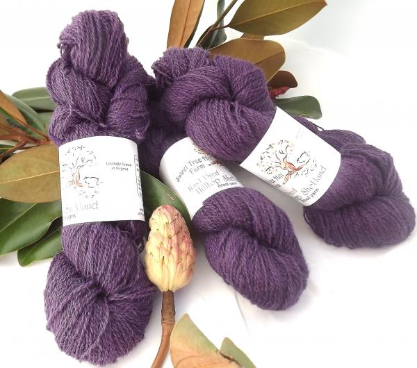 Hilltop Shetland Fingering 200 or 400 YD Skein -Hand Dyed Purple Moon picture