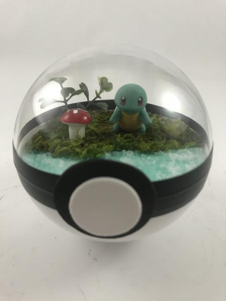 Squirtle Small Water Pokeball Terrarium
