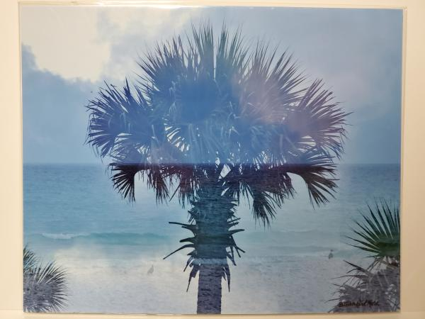 "8x10 Un-matted Print - ""Palm Tree Vibes 2"""