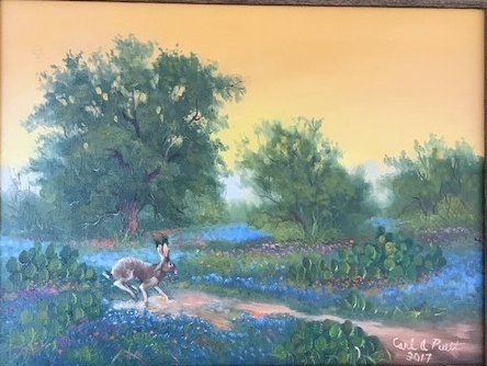 Jackrabbit Bluebonnet Crossing