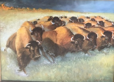 The Buffalo Heard