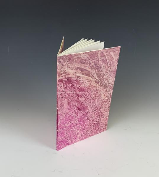 Double Pamphlet Journal with Hand-Decorated Covers (JDG07)