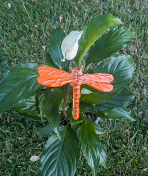 Fused Glass Dragonfly Stake - Medium