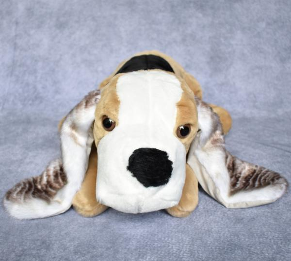 Dog, Basset picture