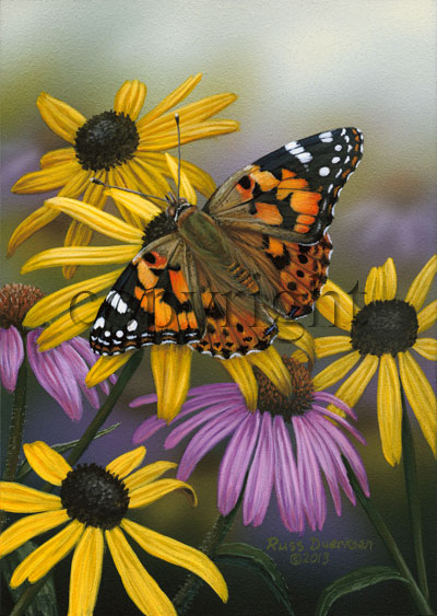 Painted Lady - Canvas Giclee