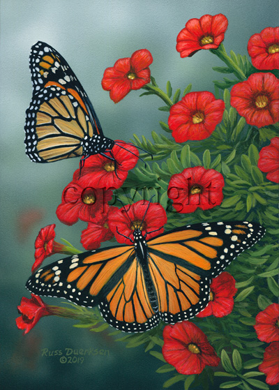 Monarchs - Canvas Giclee