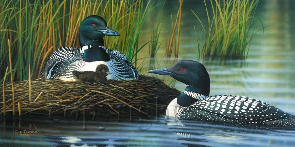 """Family Bond""  - Giclee Canvas picture"