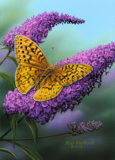 Great Spangled Fritillary - Canvas Giclee