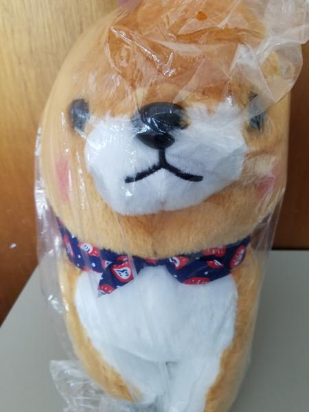 Mameshiba daruma dog plush