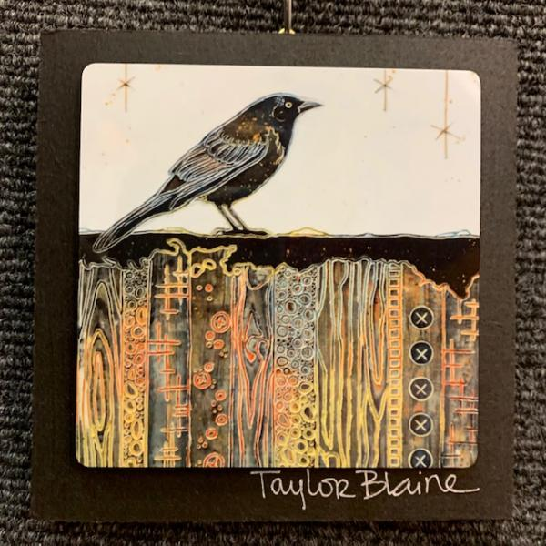 Grackle on Metal (4x4)