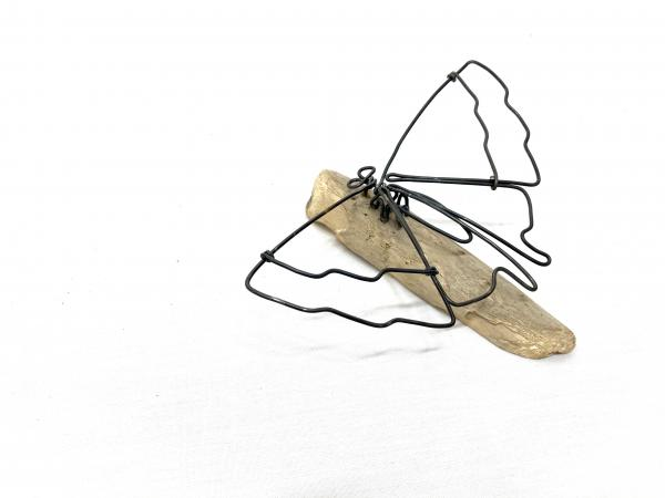 Butterfly Wire Sculpture picture