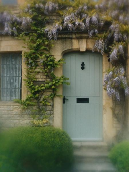 Wisteria Door - P136 - 11X14 Framed 16X20