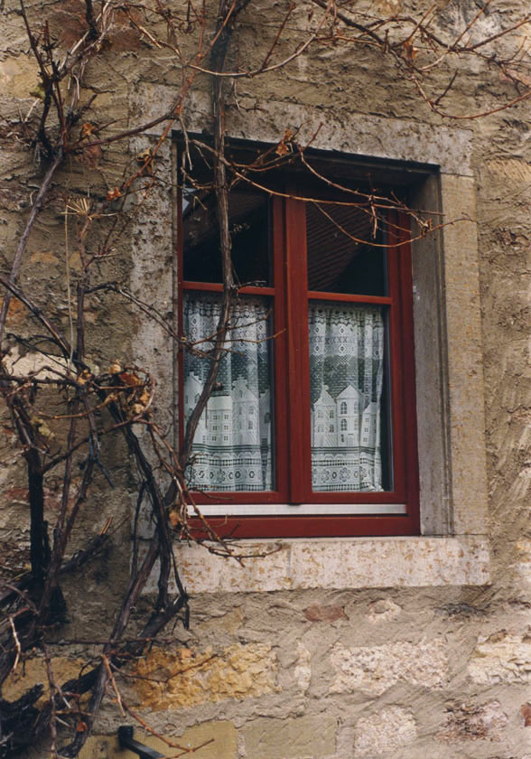 Rothenburg Window P272 - 8X10 matted 11X14