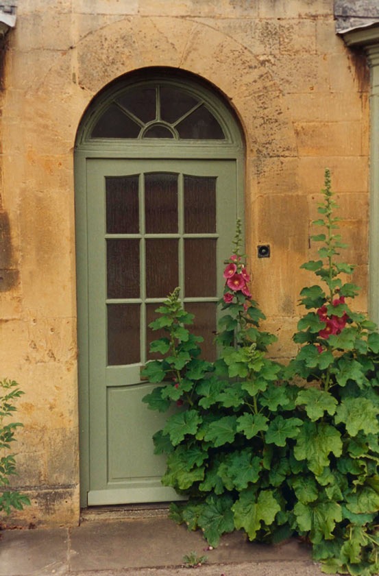 Hollyhock Door - P58 -11X14 Framed 16X20