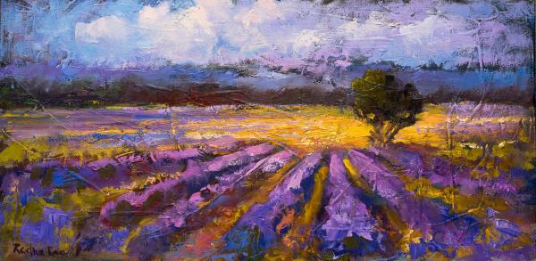 Lavender Fields and Lavender Hills