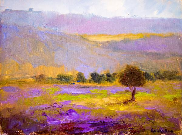 Lavender fields and Hills at Sunset