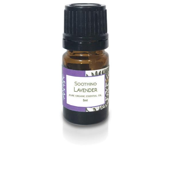 Soothing Lavender Pure Organic Essential Oil
