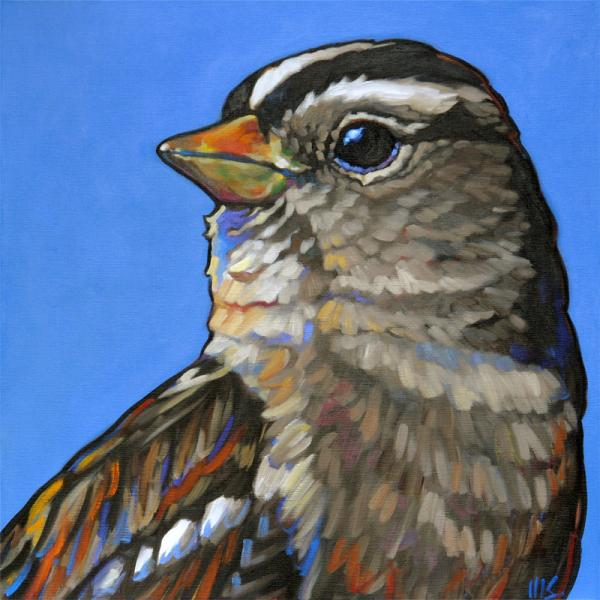 "8x8"" stretched gicleé canvas print ""Humble King: White-Crowned Sparrow"""