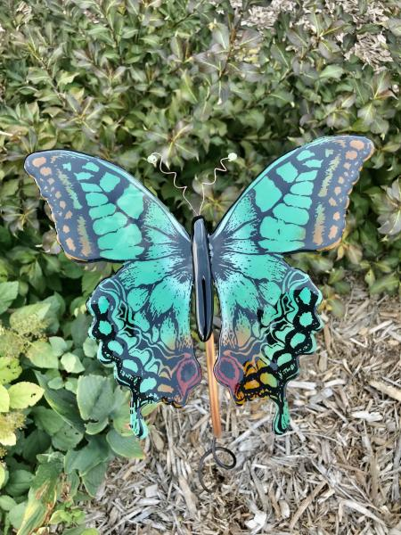Tickle Me Teal Butterfly
