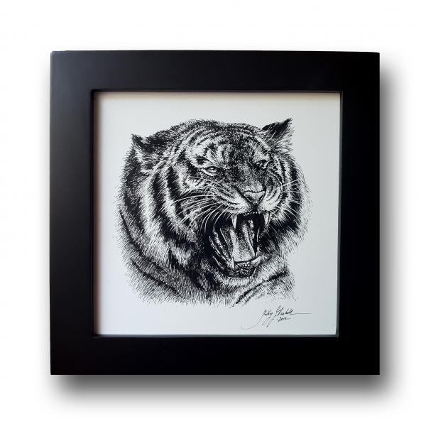'Roaring Tiger'  Ink Drawing