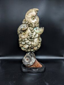 Irridescent Ammonite Sculpture