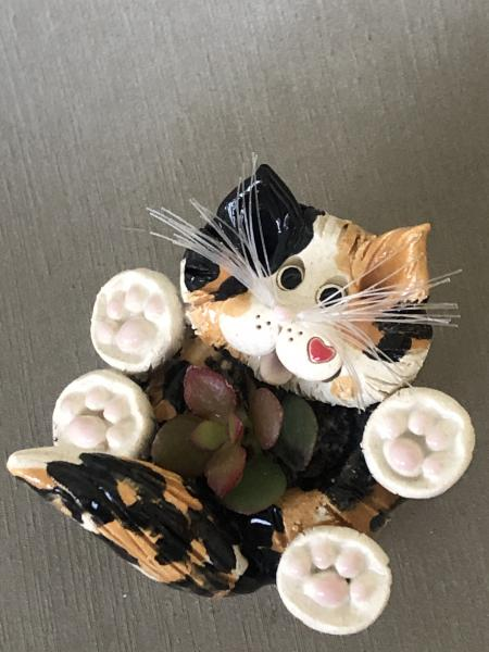 Miniature Calico cat Planter, plant included