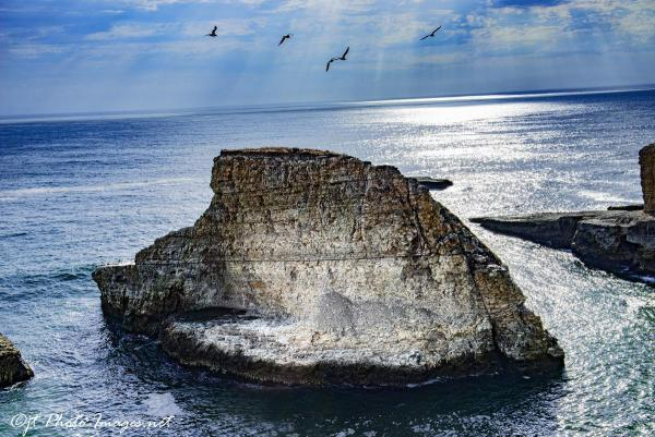 Shark Fin Rock Cove - Davenport California picture