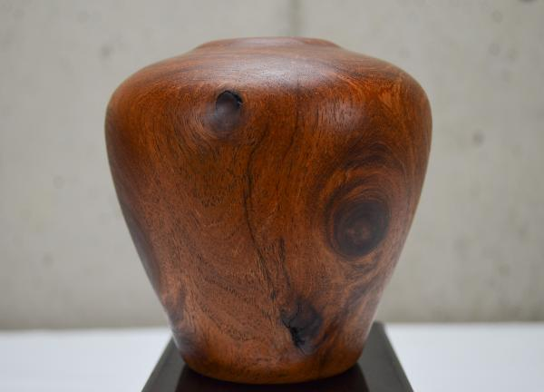 Mesquite Hollow Form (#B-1925)